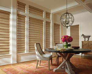 Alustra Pirouette window shadings PowerRise 2-1 with Platinum Technology-min