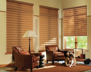 Alustra Vignette Modern Roman Shades PowerRise 2-1 with Platinum Technology-min