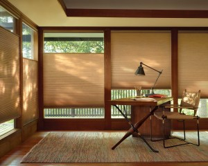 Duette Architella honeycomb shades with LiteRise-min
