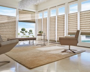 Vignette Modern Roman Shades with UltraGlide-min