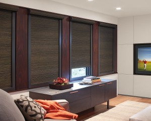 Designer Roller Shades with Blockout system-min